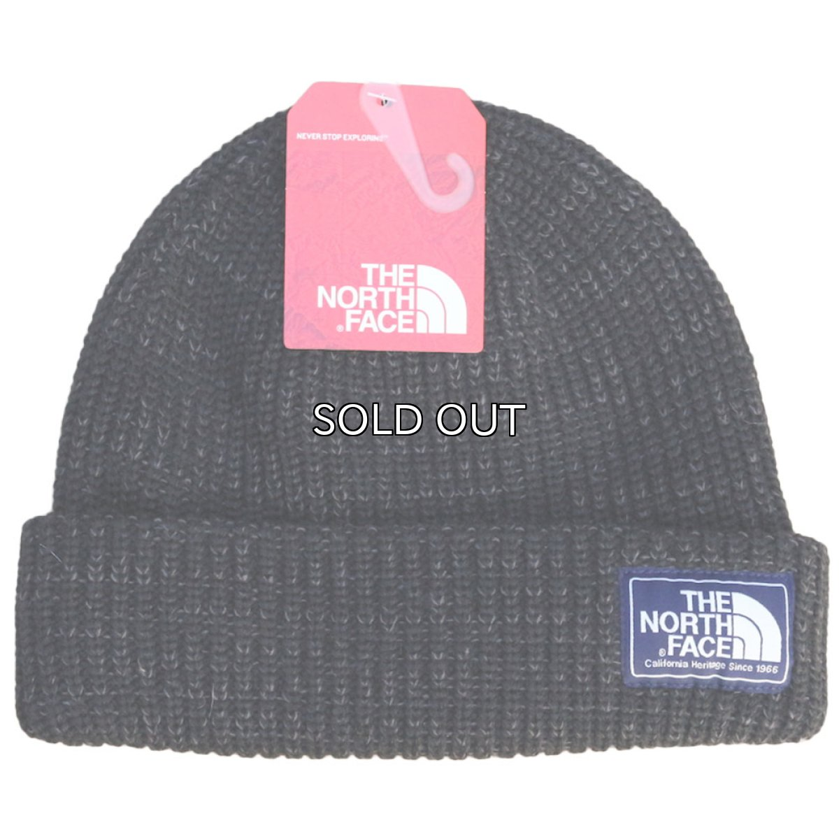 画像1: THE NORTH FACE SALTY DOG BEANIE (1)