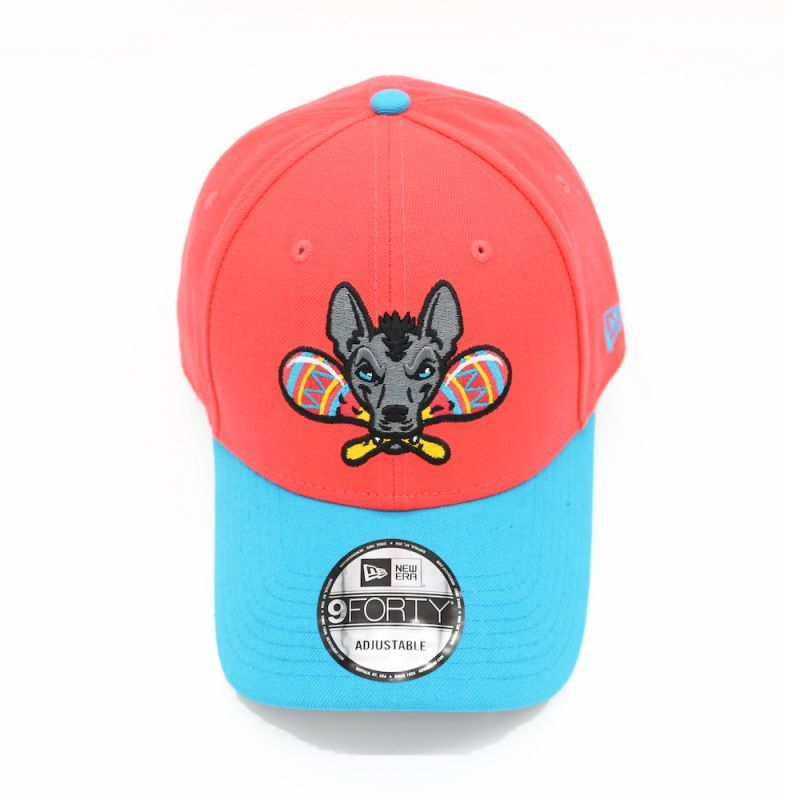 画像1: NEW ERA MILB GWINNETT STRIPERS 9FORTY CAP (1)